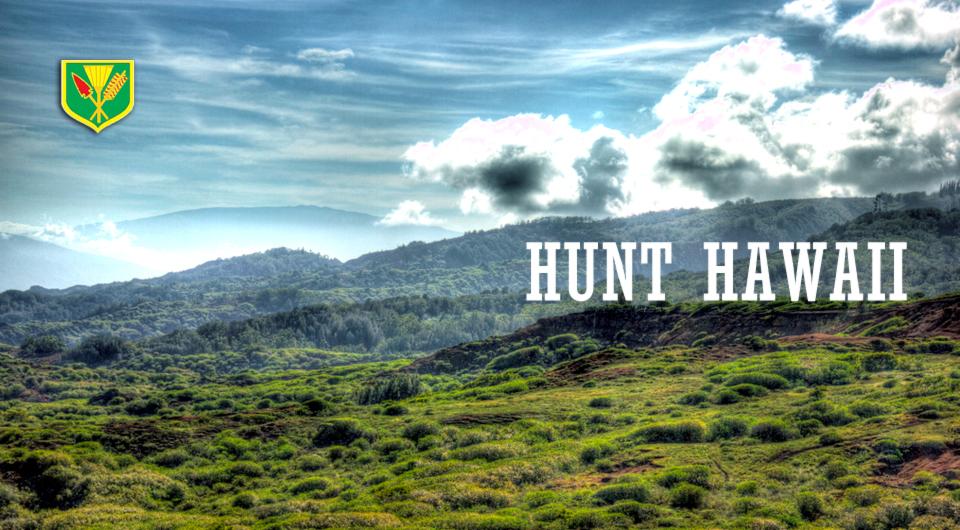 Hawaiian Bowhunting Paradise
