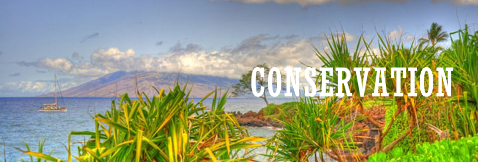 Hawaii Land Conservation